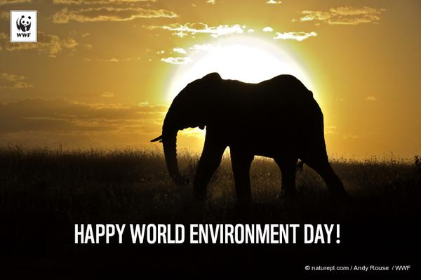 RT @WWF: Happy World Environment Day! RT if you're…